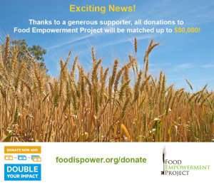 Image text reads: All donations to Food Empowerment Project will be matched by a generous supporter up to $50,000