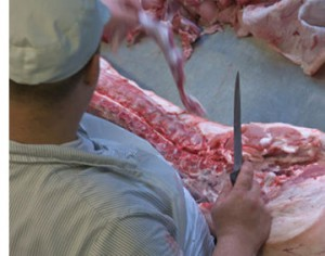 slaughterhouse_workers_small1
